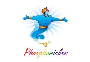 Phosphoriales : Un kit d'animation à l'innovation participative dans votre Smartphone