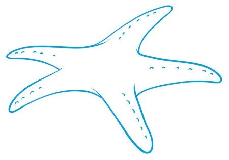 L'étoile de mer