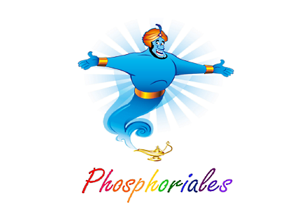 Phosphoriales : Un kit d'animation à l'innovation participative dans votre Smartphone