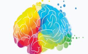 Créativité et plasticité du cerveau