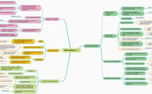 Une belle Mindmap de synthèse du Festival de l'Autonomie du Jardin